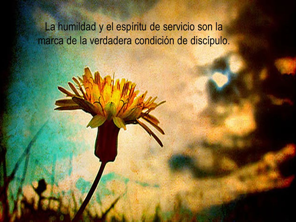 tenemos que servirnos los unos a los otros, tal como él nos sirve.