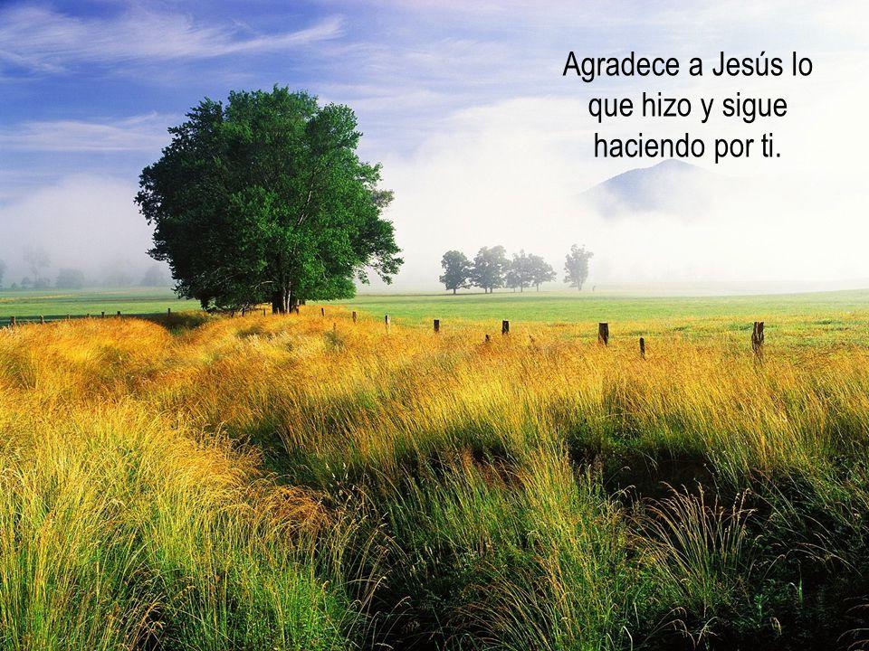 La pasión y la muerte son consecuencia de la actitud de Jesús, que nos amó hasta el extremo.