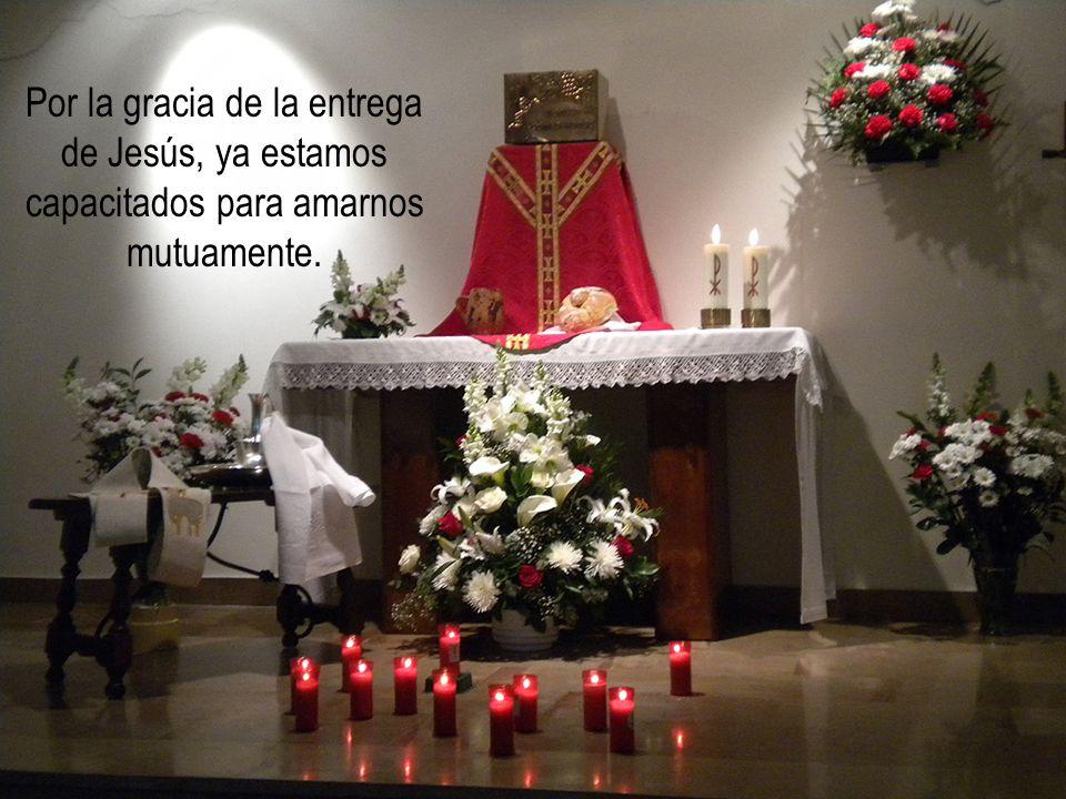 Sin la Eucaristía no seríamos capaces de amar.