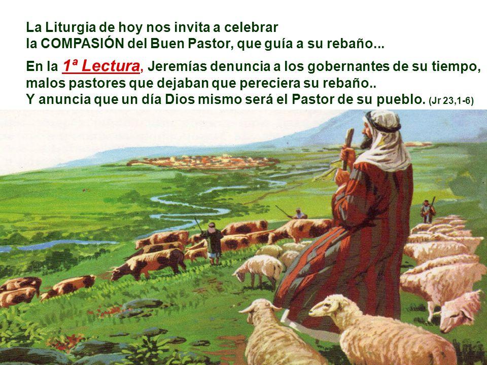 La Liturgia de hoy nos invita a celebrar la COMPASIÓN del Buen Pastor, que guía a su rebaño...