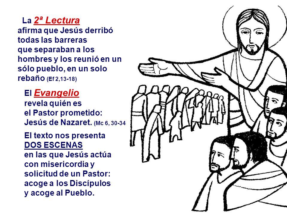 La 2ª Lectura afirma que Jesús derribó todas las barreras que separaban a los hombres y los reunió en un sólo pueblo, en un solo rebaño (Ef 2,13-18) El Evangelio revela quién es el Pastor prometido: Jesús de Nazaret.