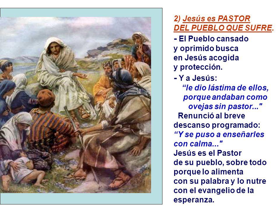 2) Jesús es PASTOR DEL PUEBLO QUE SUFRE.