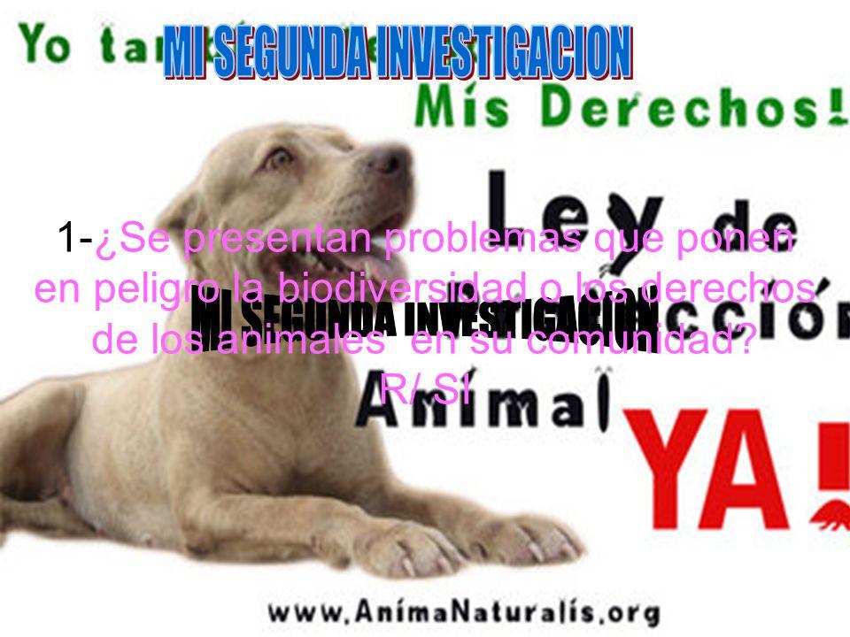 1-¿Se presentan problemas que ponen en peligro la biodiversidad o los derechos de los animales en su comunidad? R/ SI