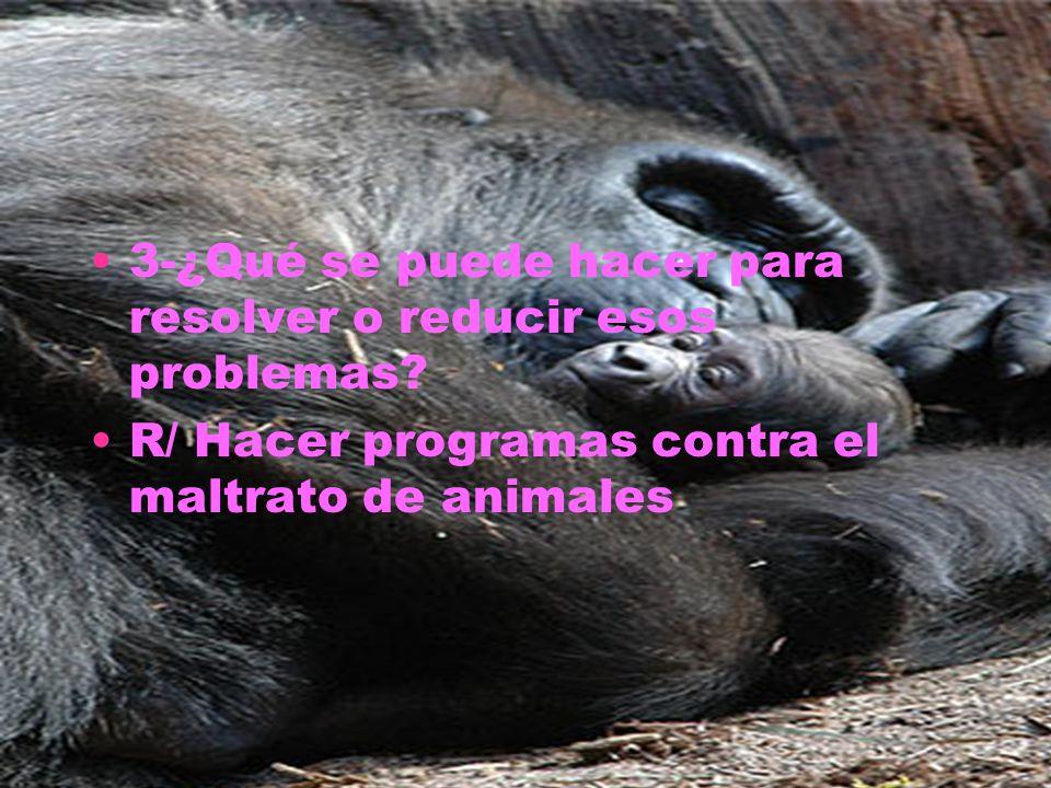 3-¿Qué se puede hacer para resolver o reducir esos problemas? R/ Hacer programas contra el maltrato de animales
