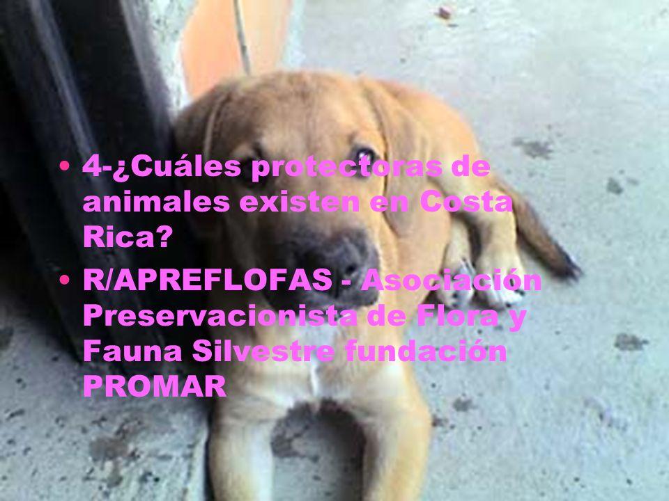 4-¿Cuáles protectoras de animales existen en Costa Rica? R/APREFLOFAS - Asociación Preservacionista de Flora y Fauna Silvestre fundación PROMAR