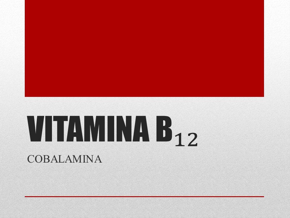 VITAMINA B COBALAMINA