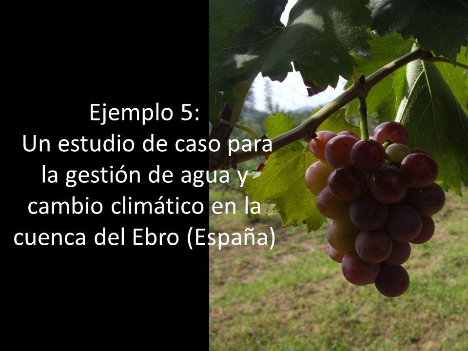 Ejemplo 5: Un estudio de caso para la gestión de agua y cambio climático en la cuenca del Ebro (España) 13