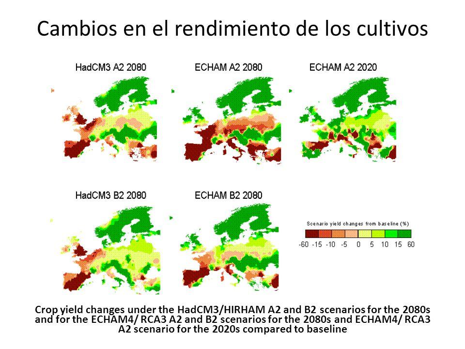 Cambios en el rendimiento de los cultivos Crop yield changes under the HadCM3/HIRHAM A2 and B2 scenarios for the 2080s and for the ECHAM4/ RCA3 A2 and