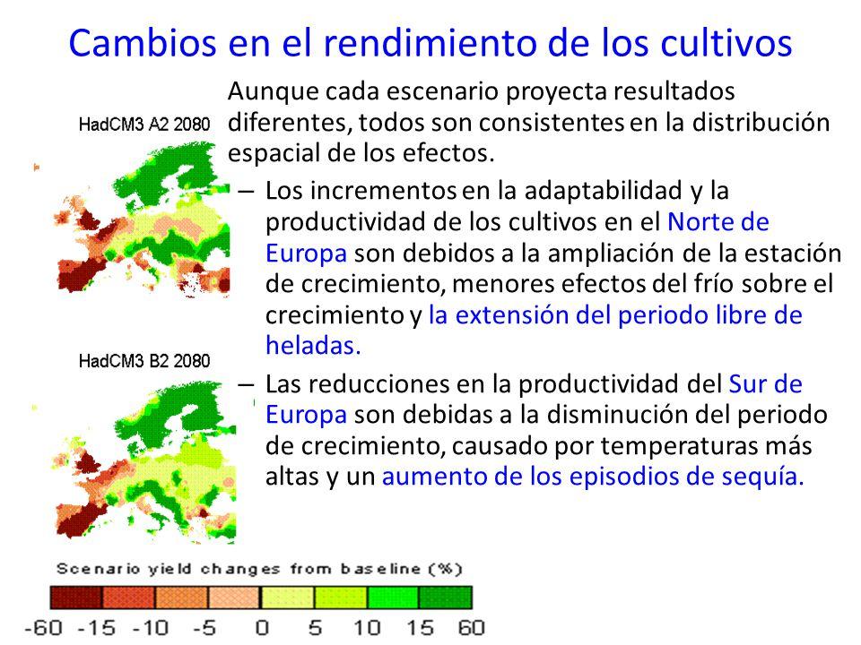 Aunque cada escenario proyecta resultados diferentes, todos son consistentes en la distribución espacial de los efectos. – Los incrementos en la adapt