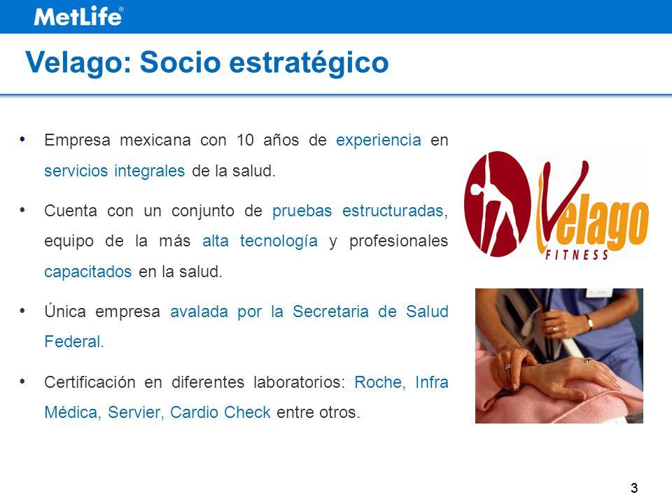 3 Empresa mexicana con 10 años de experiencia en servicios integrales de la salud. Cuenta con un conjunto de pruebas estructuradas, equipo de la más a