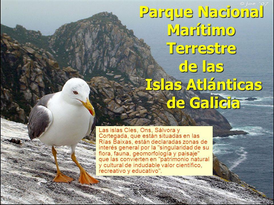 Galicia Tierra Única…