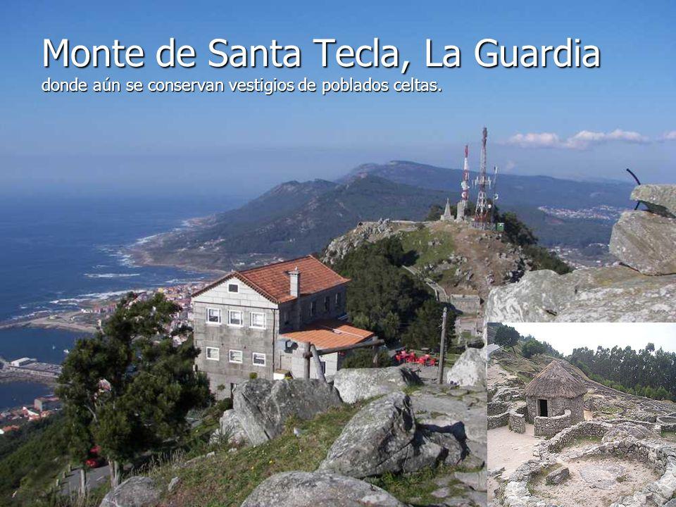 Esta fortaleza, preside la localidad de Baiona. Es el actual Parador Nacional de Turismo. Se construyó en el siglo XVI y del conjunto destacan tres he