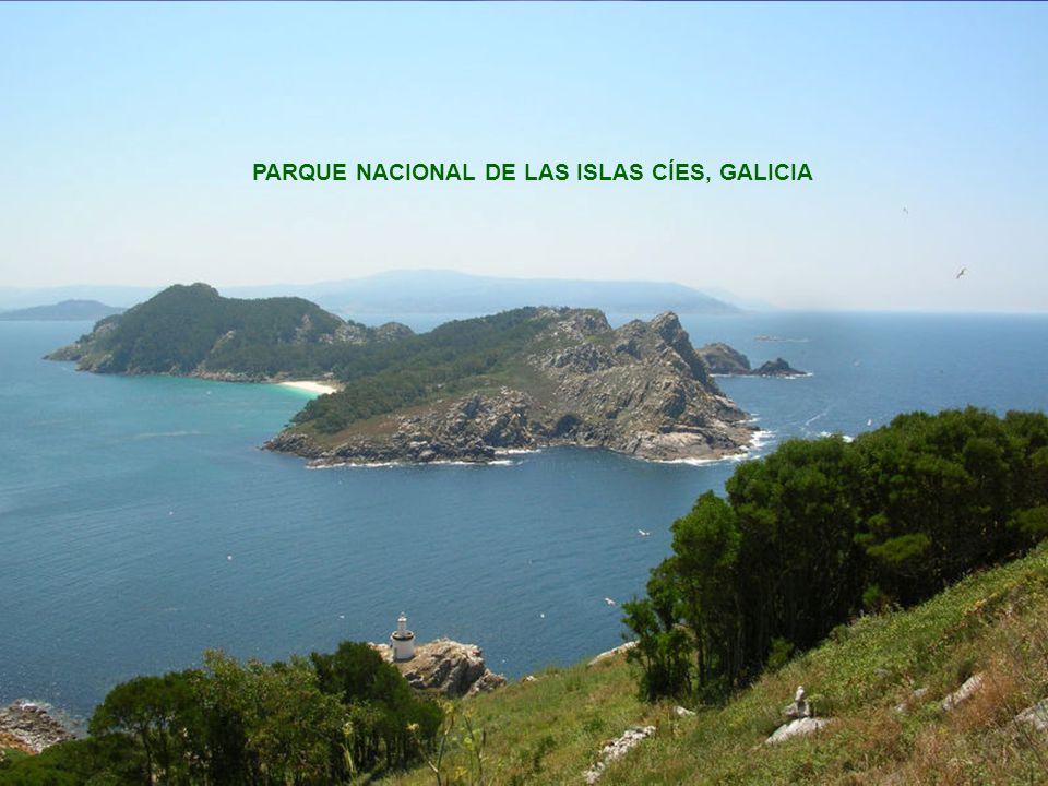 Parque Nacional Marítimo Terrestre de las Islas Atlánticas de Galicia Las islas Cíes, Ons, Sálvora y Cortegada, que están situadas en las Rías Baixas,