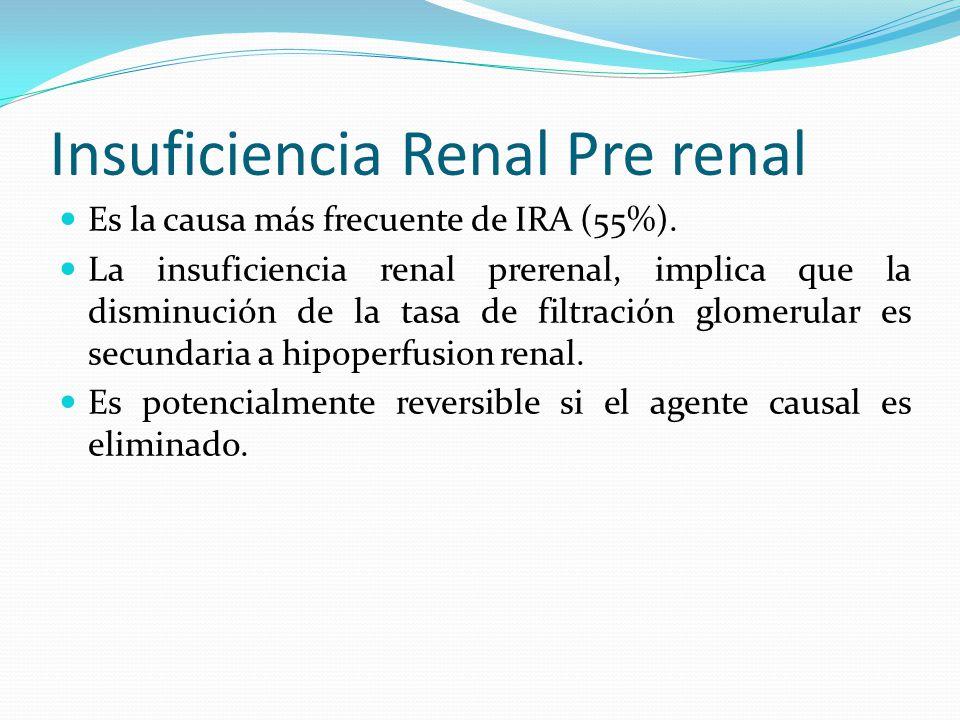 Causas de IRA prerenal: Hipovolemia Hemorragias, quemaduras, deshidratación Perdida por vía gastrointestinal (vómitos, diarrea) Perdida por vía renal (diuréticos, diuresis osmótica, insuficiencia suprarenal) Secuestro de líquido en el espacio extravascular: pancreatitis, peritonitis, traumatismos, hipoalbuminemia Bajo gasto cardiaco Cardiopatías de diversa índole que cursan con gasto cardiaco bajo (valvulopatias, miocardiopatias, arritmias, taponamiento, pericarditis) Hipertensión pulmonar, embolia pulmonar Alteraciones de la resistencia vascular renal y periférica Vasodilatación sistémica (sepsis, anestesia, anafilaxias) Vasoconstricción renal (Hipercalcemia, noradrenalina, adrenalina, ciclosporina)