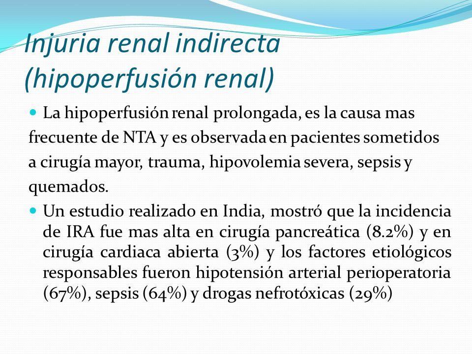 Injuria renal indirecta (hipoperfusión renal) La hipoperfusión renal prolongada, es la causa mas frecuente de NTA y es observada en pacientes sometido