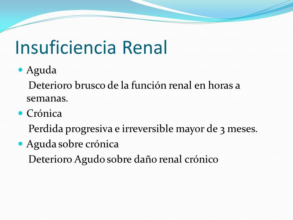 Insuficiencia Renal Aguda Síndrome clínico caracterizado por una disminución rápida (hora o días) persistente( > 24 horas) y potencialmente reversible del filtrado glomerular mayor o igual al 50%.