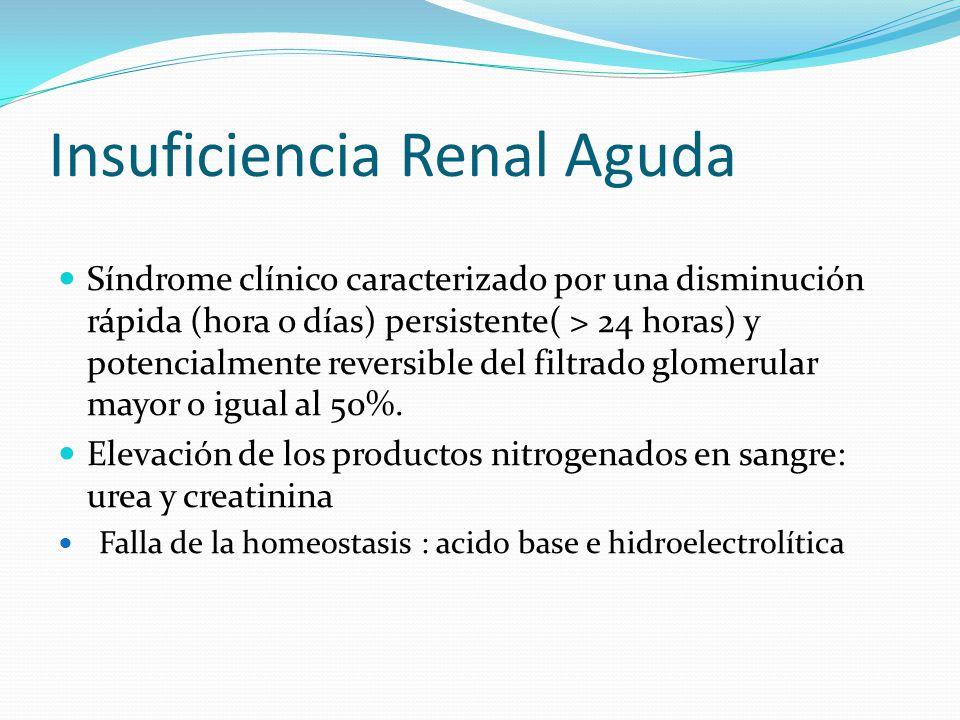 Insuficiencia Renal Aguda Síndrome clínico caracterizado por una disminución rápida (hora o días) persistente( > 24 horas) y potencialmente reversible