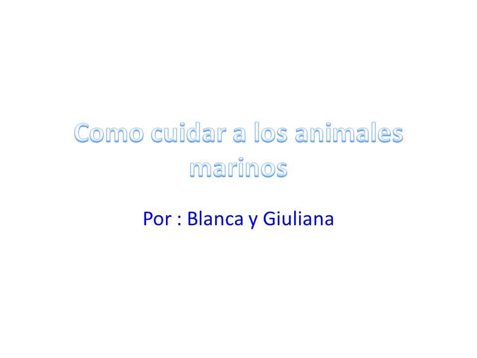 Por : Blanca y Giuliana