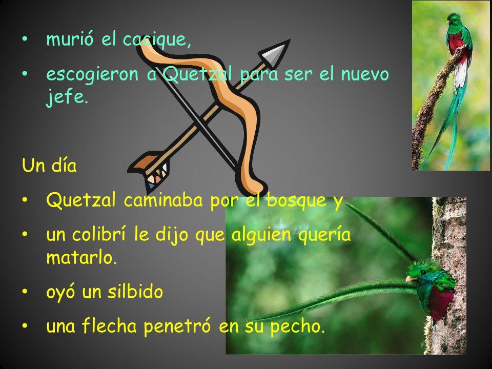 Durante la noche, Chiruma entró en el cuarto de Quetzal descubrió una pluma de colibrí el colibrí era símbolo de la buena suerte robó la pluma.