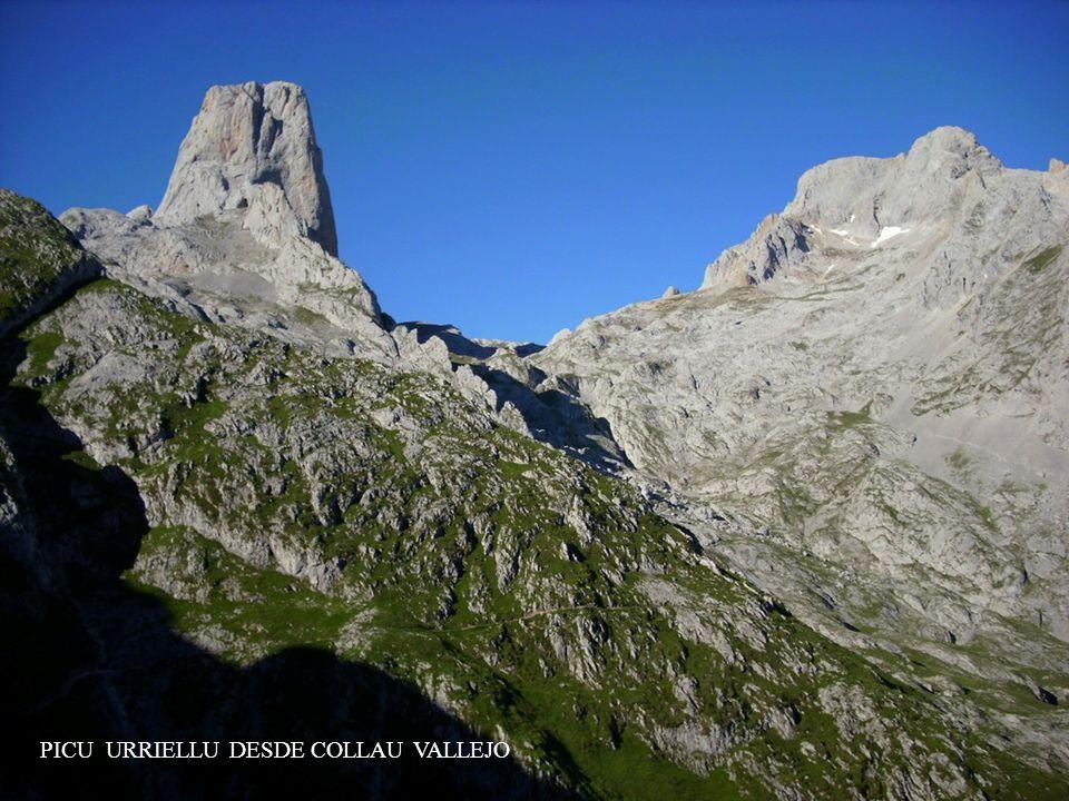 PICO EL URRIELLU O NARANJO DE BULNES - 2.519 m