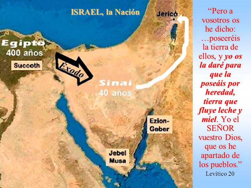Tu nombre es Jacob; no se llamará más tu nombre Jacob, sino Israel será tu nombre; y llamó su nombre Israel. También le dijo Dios: Yo soy el Dios omni