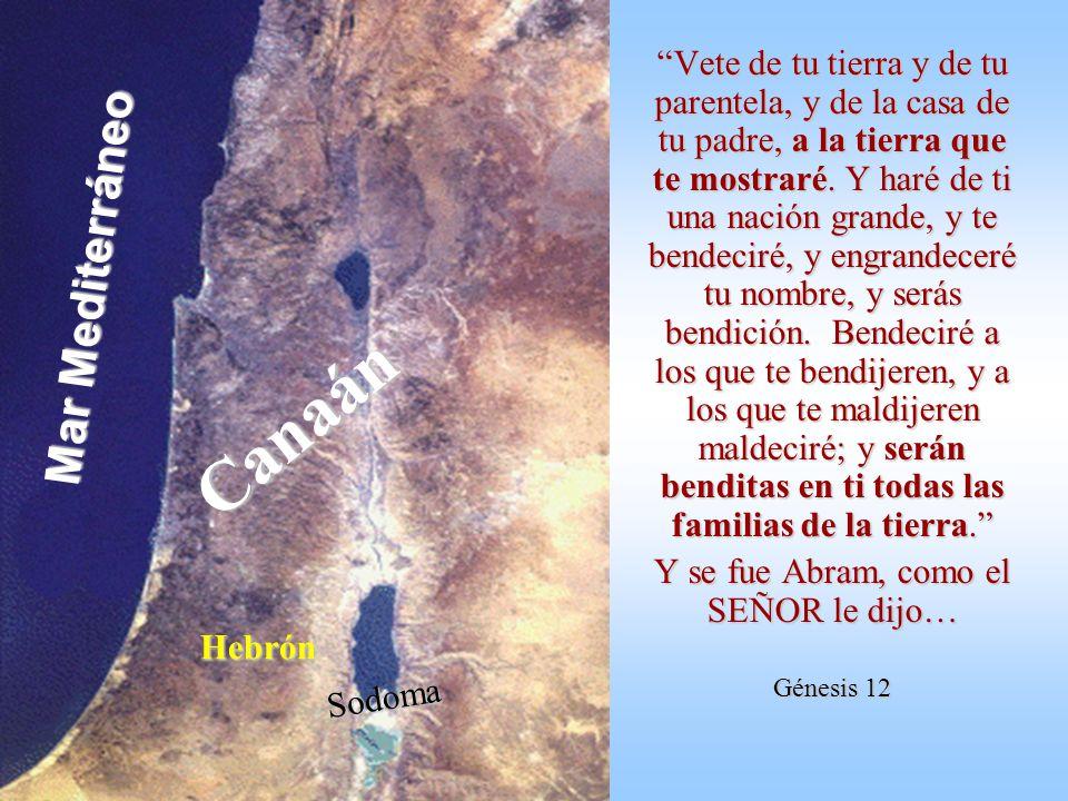 En Génesis 11 (el capítulo de la Torre de Babel) Dios despacha a la mayor parte de la humanidad: ¡qué se esparza por el mundo entero, fracciona- da en