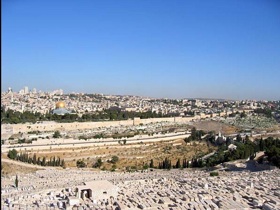 Cada año, Millones de personas se desplazan de su lugar de origen para encontrar un Lugar Sagrado