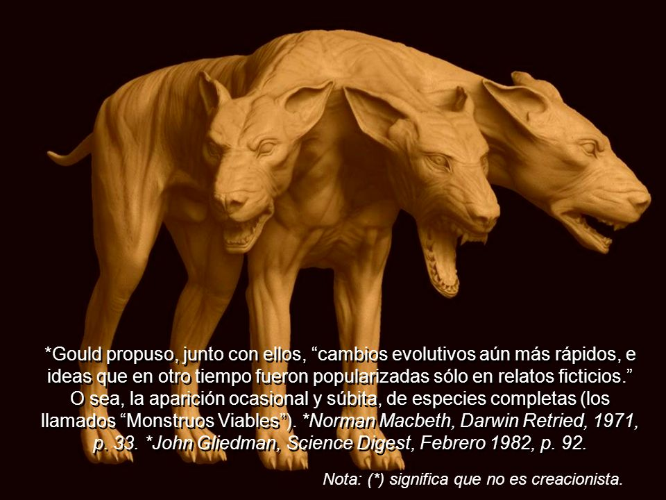 El paleontólogo *Stephen Gould (Harvard), trabajando con *Niles Elredge, nunca encontró evidencia alguna de evolución gradual en los fósiles; y al igu