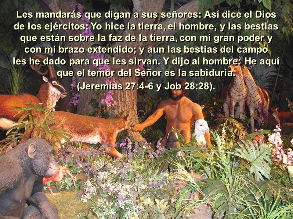 Les mandarás que digan a sus señores: Así dice el Dios de los ejércitos: Yo hice la tierra, el hombre, y las bestias que están sobre la faz de la tierra, con mi gran poder y con mi brazo extendido; y aun las bestias del campo les he dado para que les sirvan.