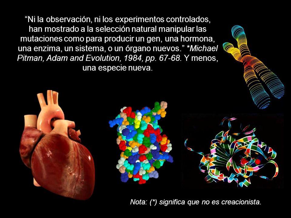 Ni la observación, ni los experimentos controlados, han mostrado a la selección natural manipular las mutaciones como para producir un gen, una hormona, una enzima, un sistema, o un órgano nuevos.