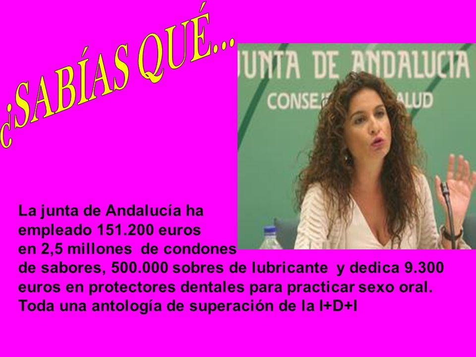 En el gobierno de Hugo Chaves trabajan siete etarras, además de Cubillas, según declaró el ex- embajador de Venezuela en la ONU ante el juez de la Audiencia Nacional Eloy Velasco