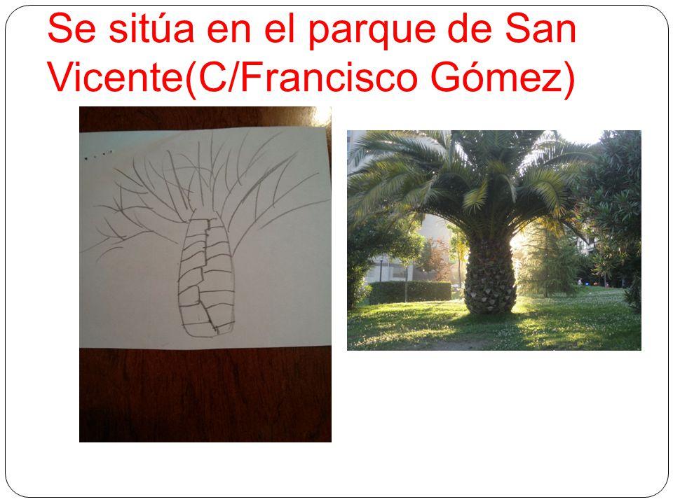 Se sitúa en el parque de San Vicente(C/Francisco Gómez)