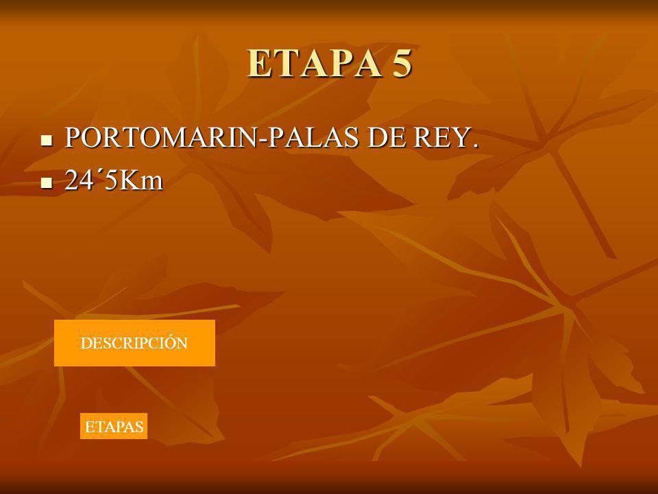 ETAPA 5 PORTOMARIN-PALAS DE REY. PORTOMARIN-PALAS DE REY. 24´5Km 24´5Km DESCRIPCIÓN ETAPAS