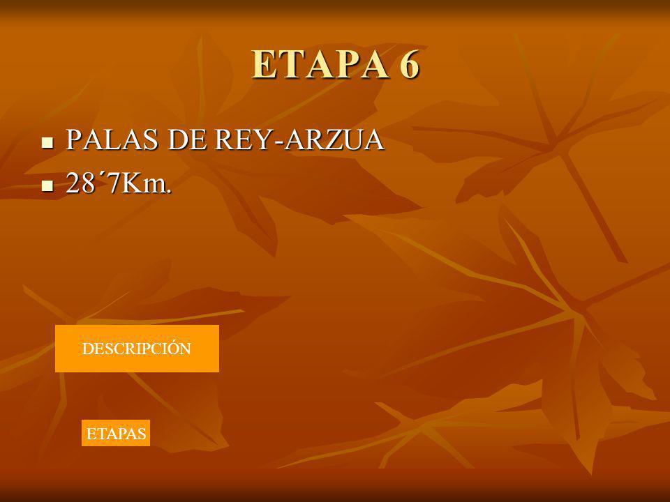 ETAPA 6 PALAS DE REY-ARZUA PALAS DE REY-ARZUA 28´7Km. 28´7Km. DESCRIPCIÓN ETAPAS