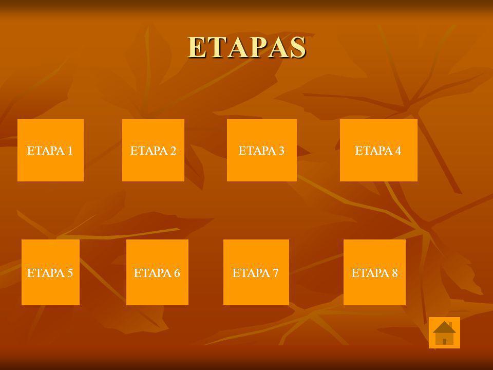 ETAPAS ETAPA 1ETAPA 2ETAPA 3ETAPA 4 ETAPA 5ETAPA 6ETAPA 7ETAPA 8