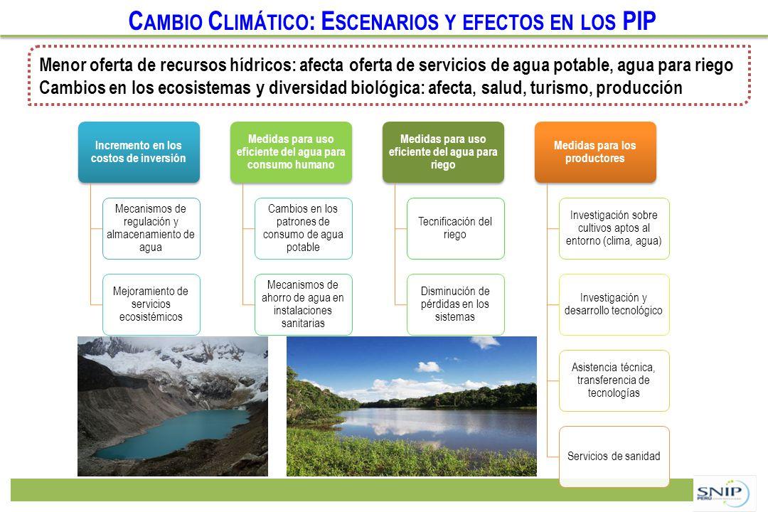 C AMBIO C LIMÁTICO : E SCENARIOS Y EFECTOS EN LOS PIP Incremento en los costos de inversión Mecanismos de regulación y almacenamiento de agua Mejorami