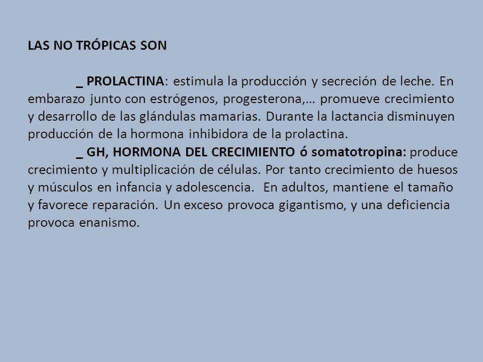 LAS NO TRÓPICAS SON _ PROLACTINA: estimula la producción y secreción de leche. En embarazo junto con estrógenos, progesterona,… promueve crecimiento y