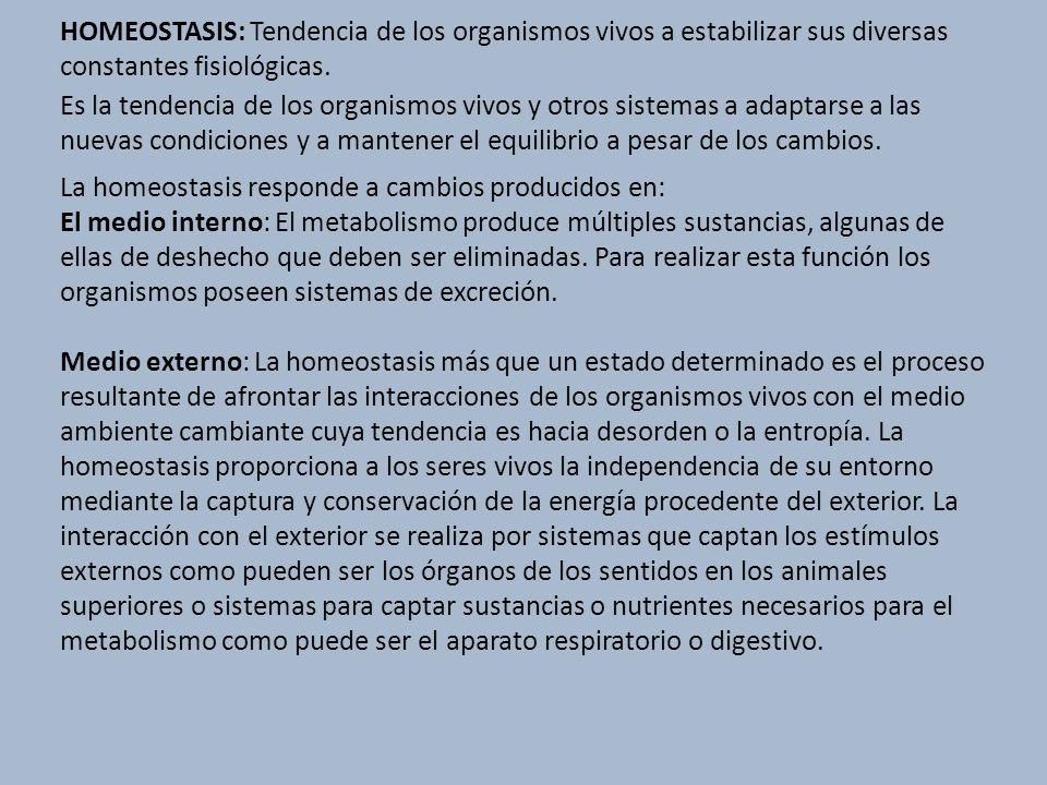 HOMEOSTASIS: Tendencia de los organismos vivos a estabilizar sus diversas constantes fisiológicas. Es la tendencia de los organismos vivos y otros sis