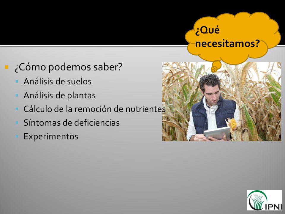 ¿Cómo podemos saber? Análisis de suelos Análisis de plantas Cálculo de la remoción de nutrientes Síntomas de deficiencias Experimentos