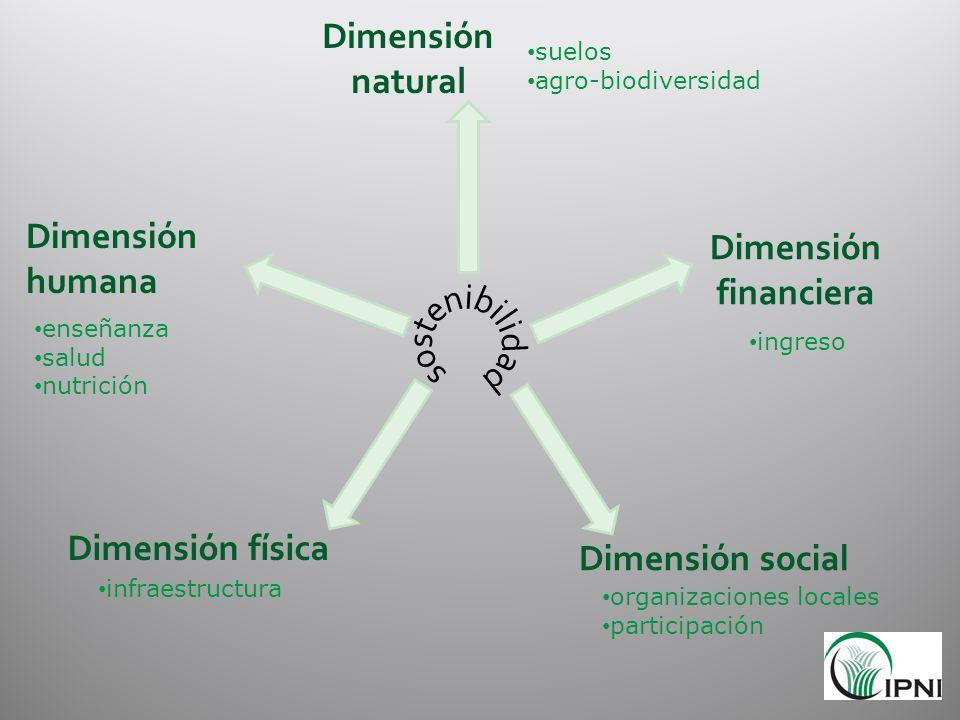 Dimensión humana Dimensión social Dimensión financiera Dimensión natural Dimensión física organizaciones locales participación enseñanza salud nutrici