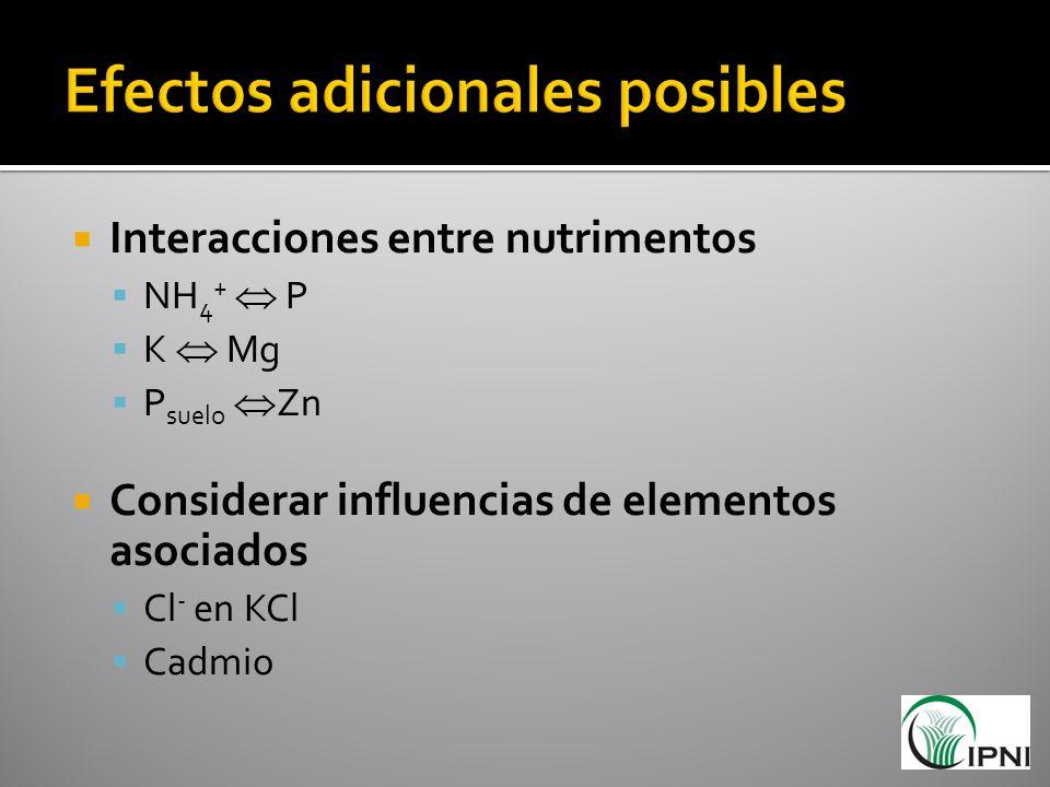 Interacciones entre nutrimentos NH 4 + P K Mg P suelo Zn Considerar influencias de elementos asociados Cl - en KCl Cadmio