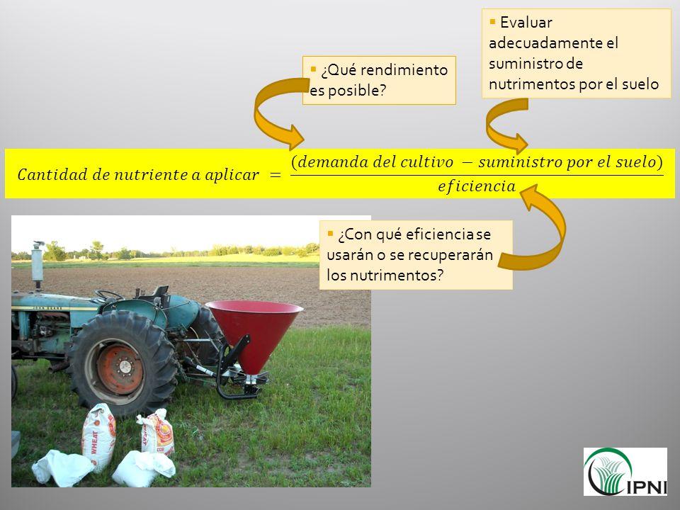 ¿Qué rendimiento es posible? Evaluar adecuadamente el suministro de nutrimentos por el suelo ¿Con qué eficiencia se usarán o se recuperarán los nutrim