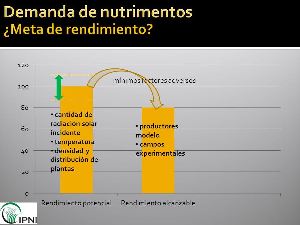 mínimos factores adversos cantidad de radiación solar incidente temperatura densidad y distribución de plantas productores modelo campos experimentale