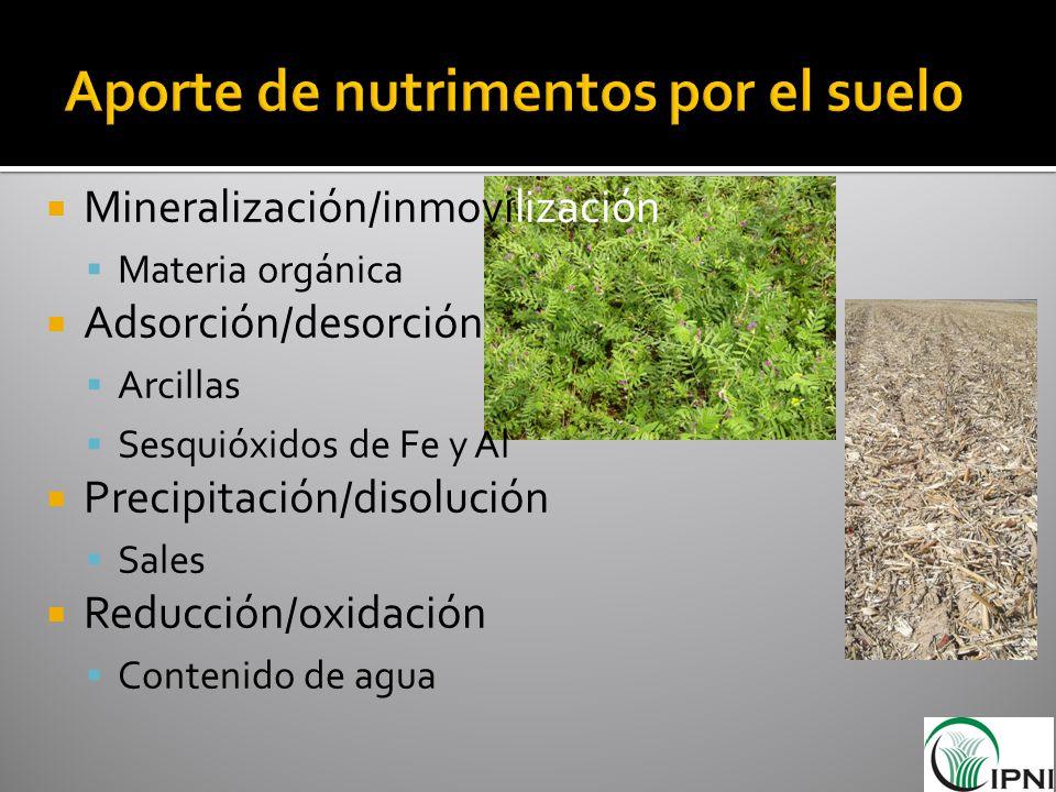Mineralización/inmovilización Materia orgánica Adsorción/desorción Arcillas Sesquióxidos de Fe y Al Precipitación/disolución Sales Reducción/oxidación