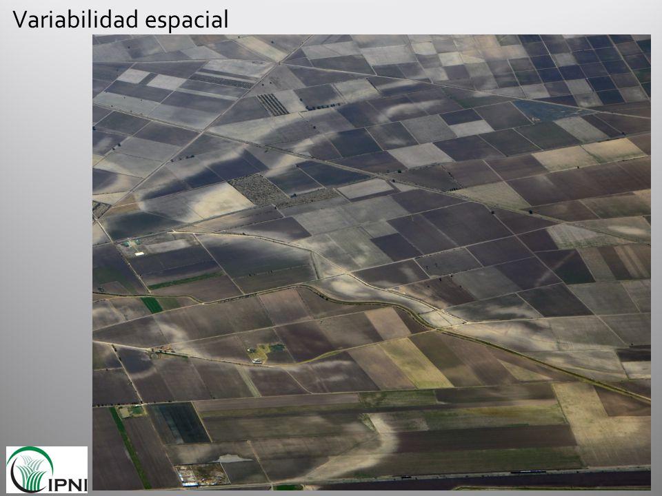 volumen de suelo en una ha a 20 cm (m 3 ) densidad aparente (g/cm 3 ) peso de suelo en una ha a 20 cm (ton) P disponible según Bray P1 (ppm) P suministrado por el suelo (kg/ha) P 2 O 5 suministrado por el suelo (kg/ha) Demanda de P 2 O 5 para 12 t/ha de maíz (kg/ha) 20001.22400153682128
