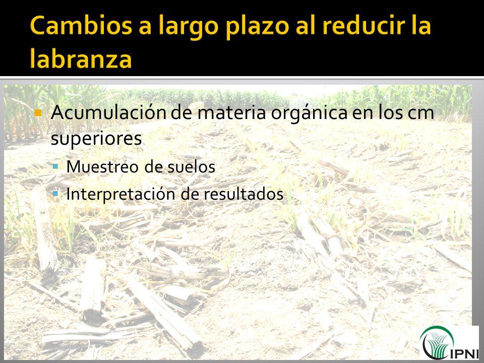 Acumulación de materia orgánica en los cm superiores Muestreo de suelos Interpretación de resultados