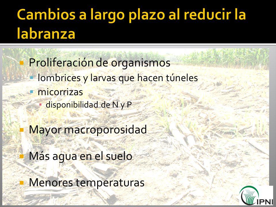 Proliferación de organismos lombrices y larvas que hacen túneles micorrizas disponibilidad de N y P Mayor macroporosidad Más agua en el suelo Menores