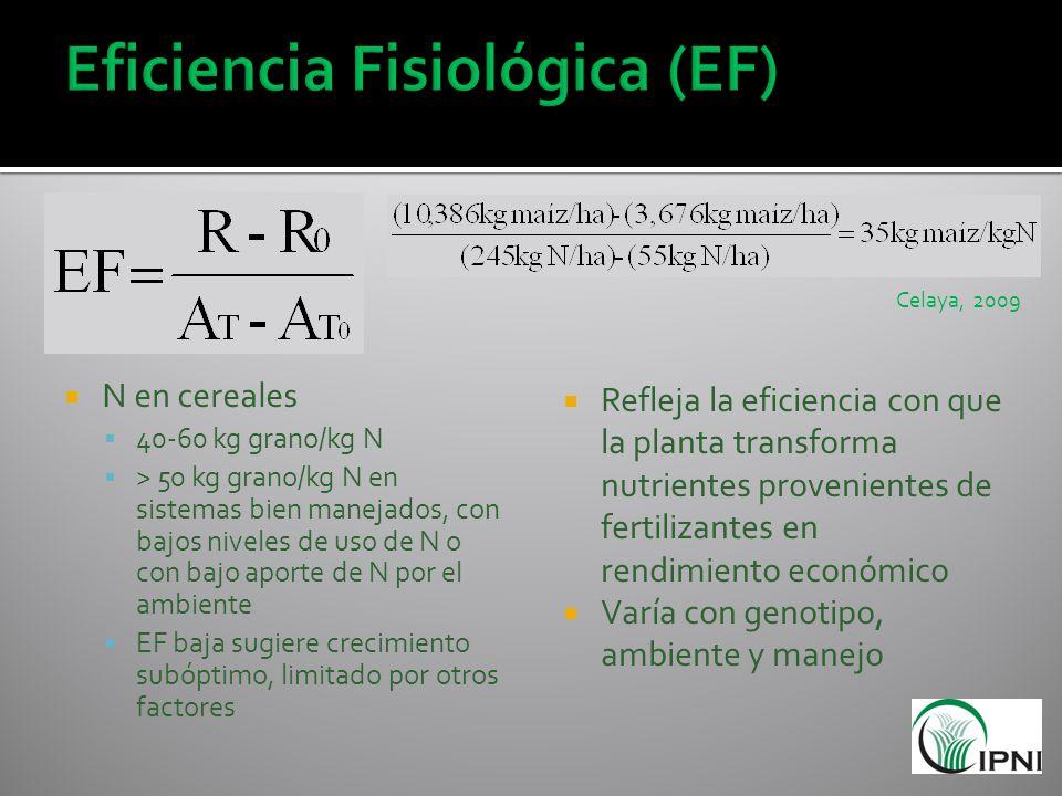 N en cereales 40-60 kg grano/kg N > 50 kg grano/kg N en sistemas bien manejados, con bajos niveles de uso de N o con bajo aporte de N por el ambiente