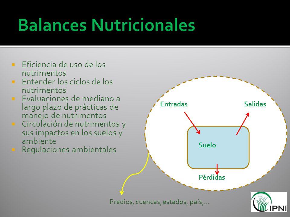 Eficiencia de uso de los nutrimentos Entender los ciclos de los nutrimentos Evaluaciones de mediano a largo plazo de prácticas de manejo de nutrimento
