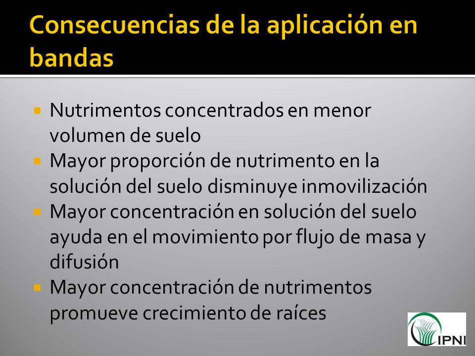Nutrimentos concentrados en menor volumen de suelo Mayor proporción de nutrimento en la solución del suelo disminuye inmovilización Mayor concentració
